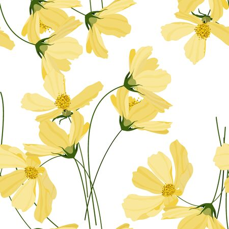 Yellow pastel blooming  Flowers cosmey. Realistic isolated seamless floral pattern on vintage background. Hand drawn wallpaper botanical print.  Vector illustration. Çizim