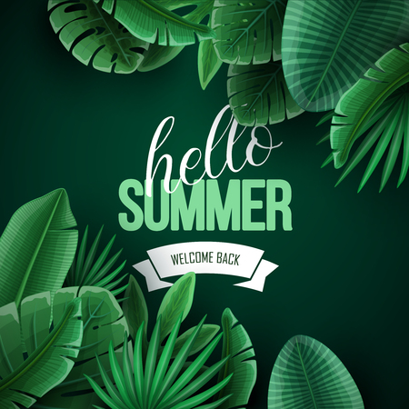 Beautiful summer background with palm leaves. Vector illustration.
