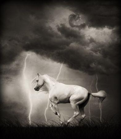 Witte paard onder donder hemel met bliksem