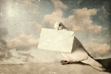 messenger: White Homing pigeon with letter. Ancient card