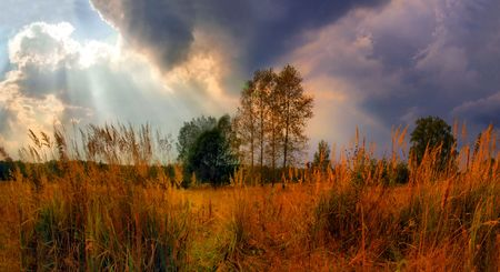Landscape with dark thunder sky and sun rays Stock Photo - 4425746