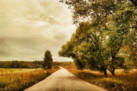 De weg door veld. Herfst landschap. Stockfoto