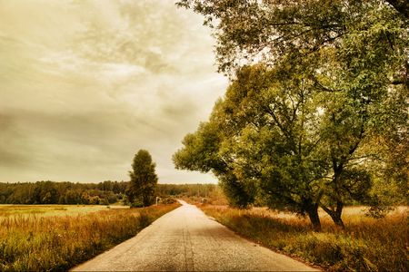 The road through field. Autumn landscape. Stok Fotoğraf