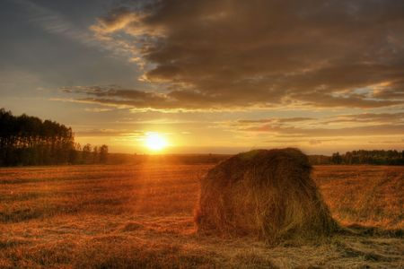 Landscape with  field, haystack and sunset Stock Photo - 5051047