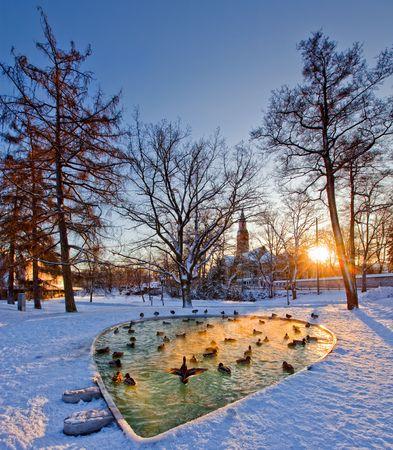 연못 헬싱키 공원. 헬싱키에서 홀 및 국립 박물관보기. 핀란드 스톡 콘텐츠