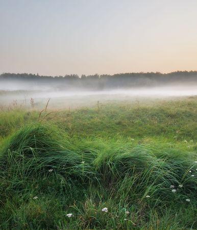 Rural landscape with fog on sunset photo