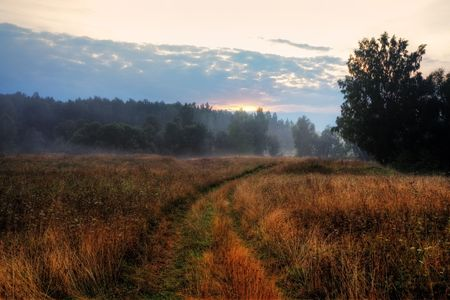 Evening landscape with fog photo