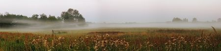 foggy rural landscape photo