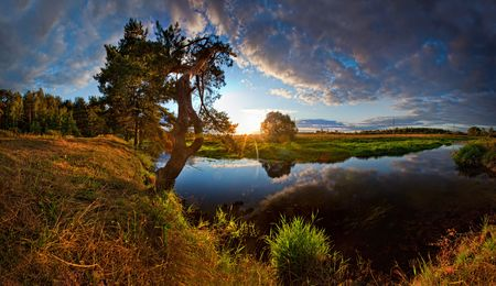 sunup: Summer panorama with river and pine-tree on sunset