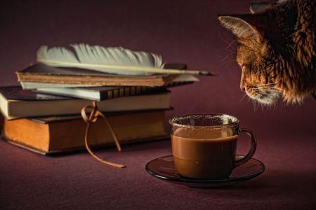 本とコーヒーのカップのある静物 写真素材