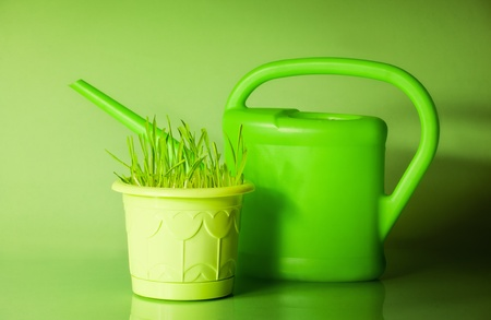 hotbed: Green grass in flowerpot and watering can  Stock Photo