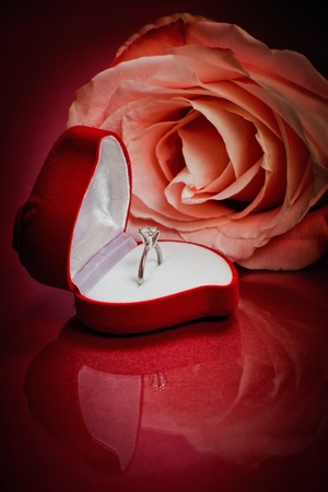 Close-up of pink rose with diamond ring Stock Photo - 8434246