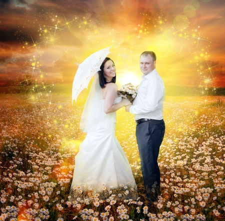 Newlyweds going on daisy field in magic light photo