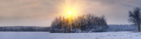 Winter landscape at sunny evening. Moscow region photo
