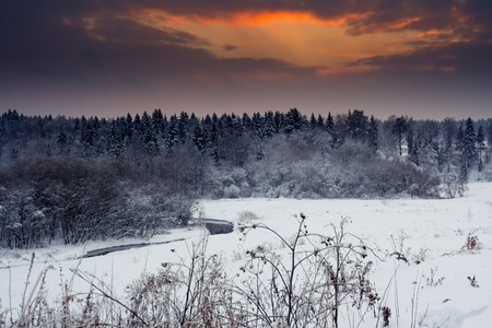 Winter landscape with field and forest at sunny evening Stock Photo - 9223873