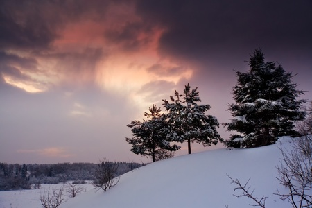 Winter landscape with field and forest at sunny evening photo