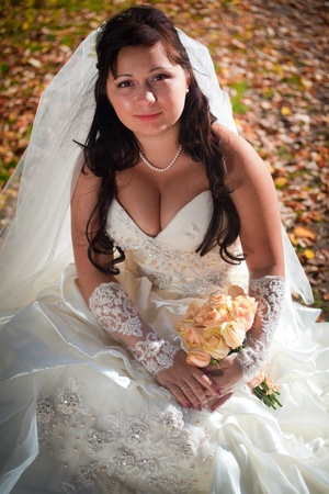 mow: Beautiful bride posing in autumn field Stock Photo