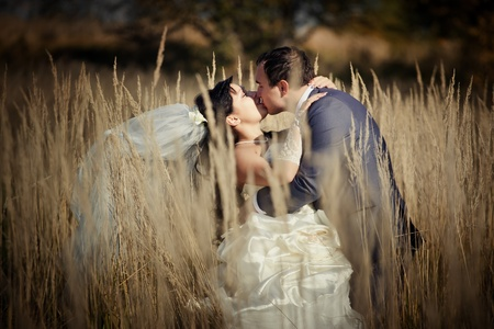 Kissing newlyweds in autumn field photo