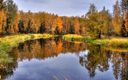 Paysage panoramique avec la forêt du lac en automne journée pluvieuse