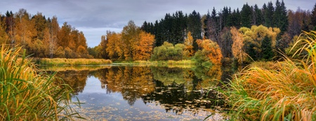 Panoramic landscape with forest lake in autumn rainy day photo