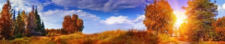 針広混交林と秋のパノラマ風景 写真素材