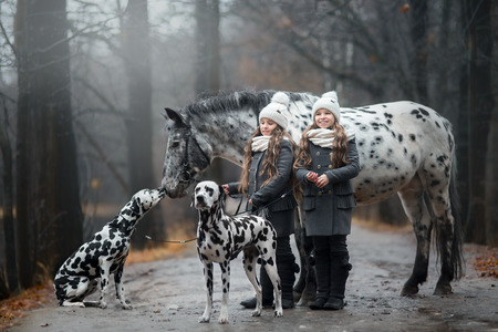 Twins girls portrait with Appaloosa horse and Dalmatian dogs in rainy autumn park Banque d'images