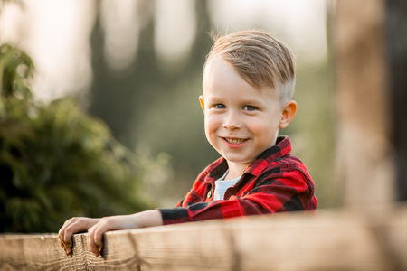 Portrait of a little boy in the evening summer park