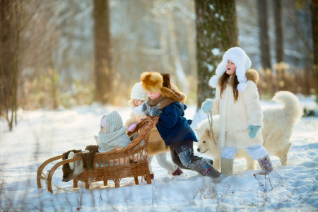 Winter funny children portrait with samoyed dog in sunny park