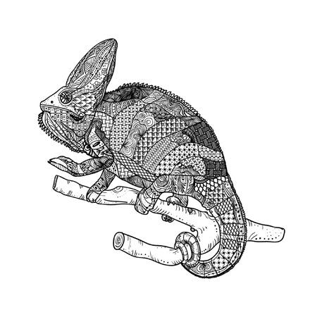 Chamelion. Vector illustration. Coloring page for adult and older children. Zen doodle.
