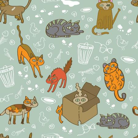 undomesticated cat: Homeless cats pattern