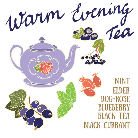 dog rose: Delicious autumn Warm Evening tea recipe with black currant, blueberry, dog rose and elderberries.
