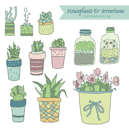 houseplants: Cute hand drawn terrariums, houseplants and succulents in pots. Vector set.
