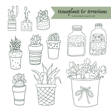 Cute hand drawn terrariums, houseplants and succulents in pots. Vector set.