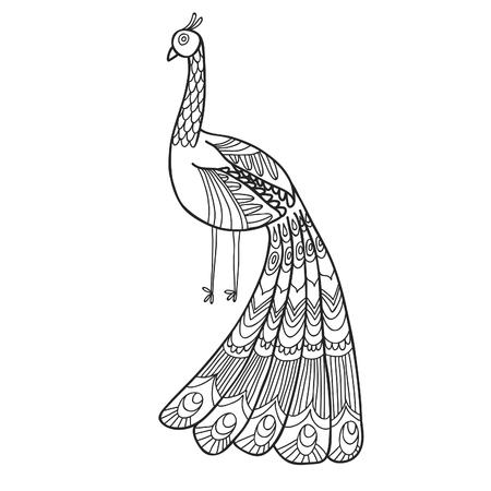 maharaja: Maharaja Garden peacock for coloring. Adult coloring page.