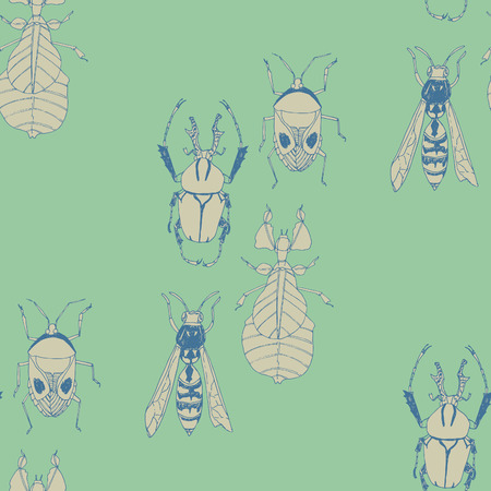 nature beauty: Insects seamless vector pattern. Nature beauty.