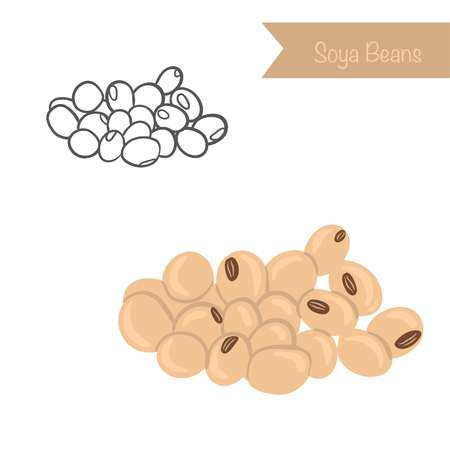 Hand drawn outlined and colored Soya Beans Illustration