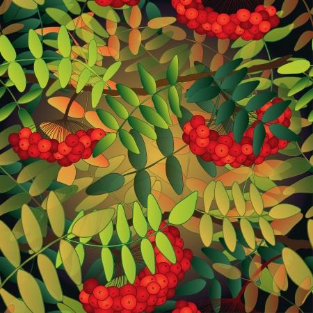 eberesche: Nahtlose Muster mit Vogelbeeren, Bl�tter und Platz f�r Ihren Text. Illustration