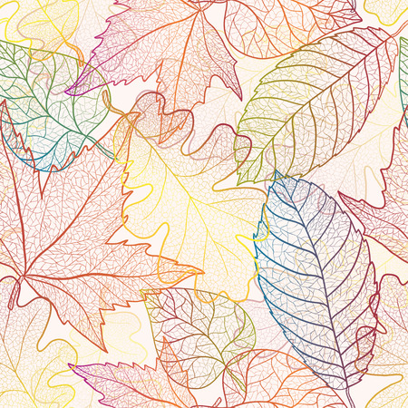 sycamore: Autumn transparent maple leaves pattern background. Colored art vector autumn leaves pattern. Fabric texture.