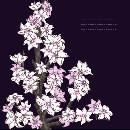 Branch of hand drawn cherry blossom on the dark background Vector