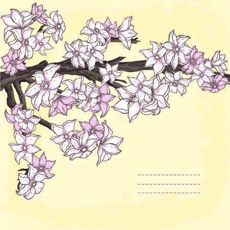 Branch of hand drawn cherry blossom Vector