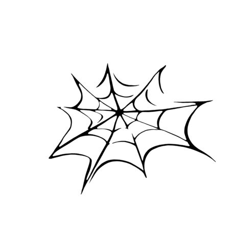 Hand drawn spider web isolated on white background. design element for Halloween.