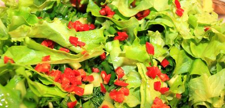Raw vegan food as background. Salad of greens, fresh vegetables, close-up. 스톡 콘텐츠