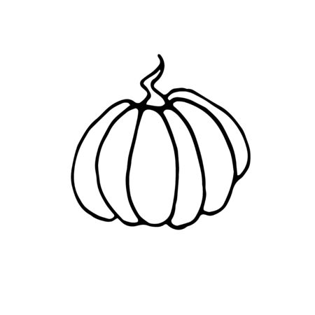Pumpkin icon in sketch style isolated on white background. Outline doodle. Symbol autumn, crop, fruitful year. Hand drawn vector EPS10 illustration.