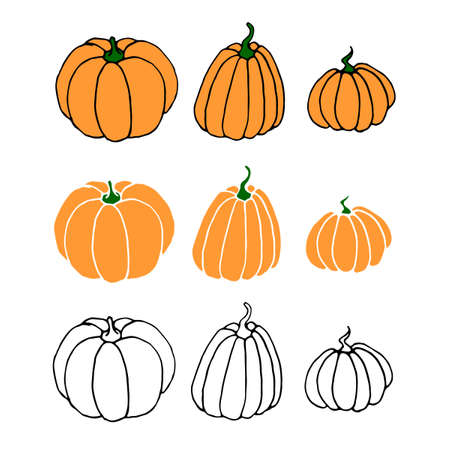 Set of Pumpkin icon in sketch style isolated on white background. Outline doodle. Symbol autumn, crop, fruitful year. Hand drawn vector EPS10 illustration.