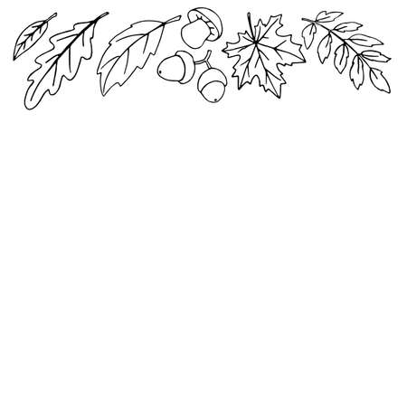 Autumn background with space and border of leaves, mushrooms, acorns on upper edge. For invitation, ending, frame, children's print, or coloring. The theme is forest, happy fall, thanksgiving.