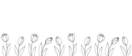 Row of contour tulip flowers. Vector hand drawn spring background isolated. Horizontal bottom edging, border, decoration for greeting card, invitation, Valentine's, Women's or Mother day.  イラスト・ベクター素材