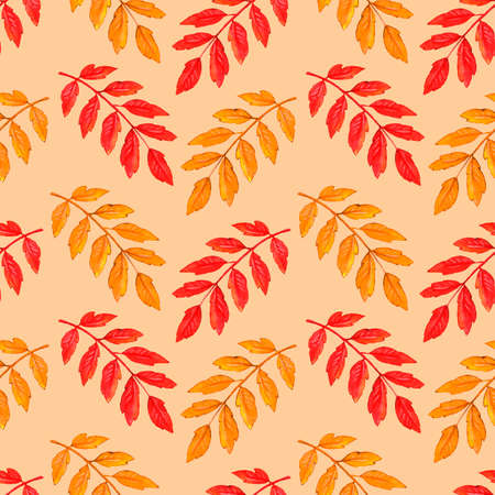 Watercolor autumn rowan leaves seamless pattern. Colorful backgrounds and textures for seasonal design, packaging, home textiles, fabric, thanksgiving theme and happy fall.