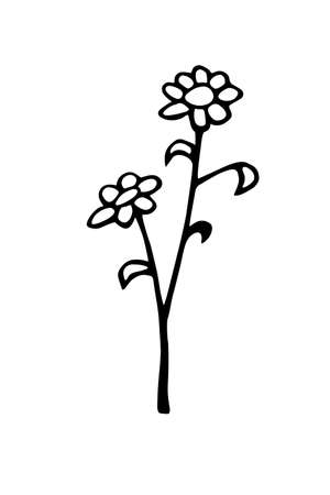 Hand drawn abstract Flowers on branch. Black and white stylized botanical elements for design isolated on white background. Vector illustration in doodle style. Illustration