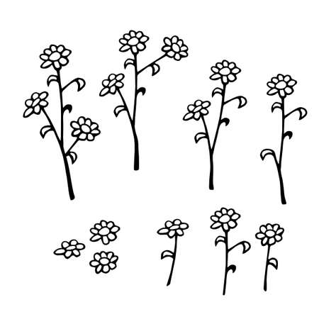 Set of hand drawn abstract Flowers on branch. Black and white stylized botanical elements for design isolated on white background. Vector illustration in doodle style.