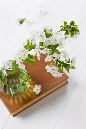 bookish: Beautiful blossom branch of cherry-tree in a glass vase with vintage book on a white background